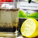Błonnik oczyszczający przepis na napój